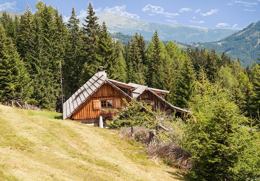 Die Hütte auf der Alm