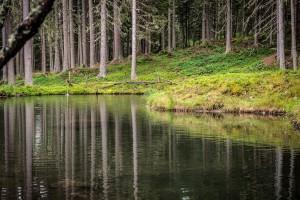 Der-Teich