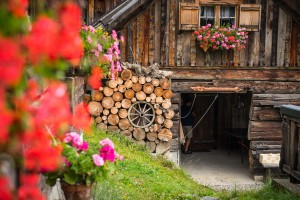 Die-Hütte